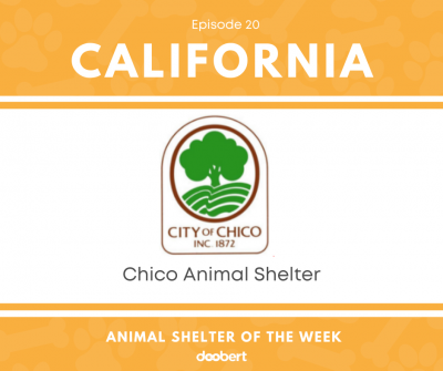 FB 20. Chico Animal Shelter_Animal Shelter of the Week