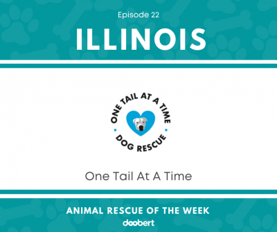 FB 22. One Tail At A Time_Animal Rescue of the Week