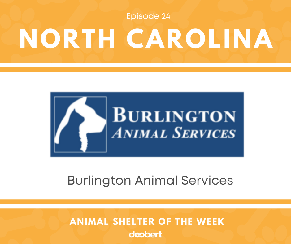FB 24. Burlington Animal Services_Animal Shelter of the Week