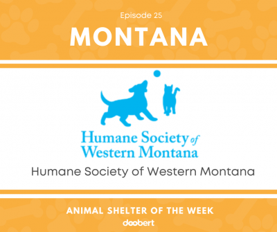 FB 25. Humane Society of Western Montana_Animal Shelter of the Week