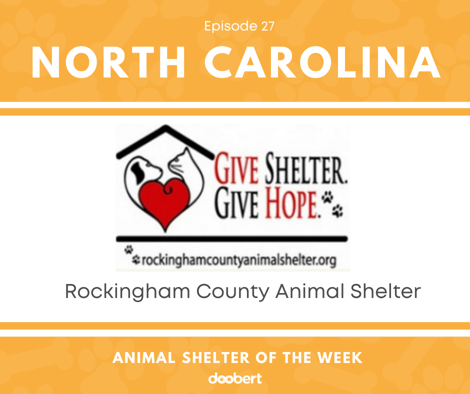 FB 27. Rockingham County Animal Shelter_Animal Shelter of the Week