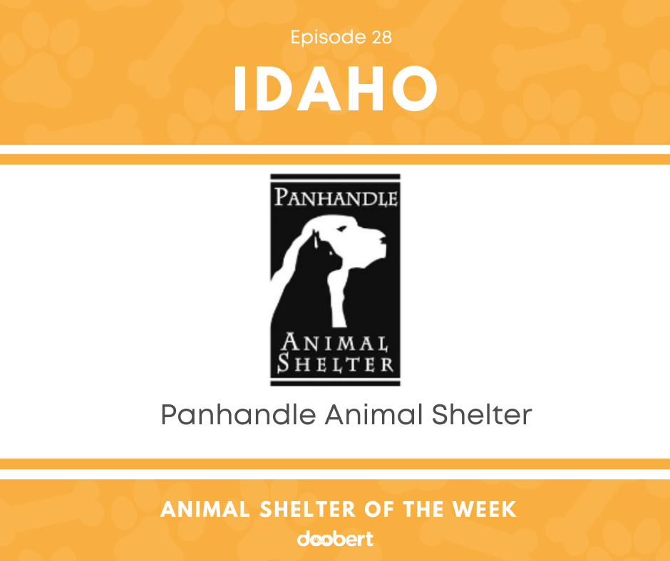 FB 28. Panhandle Animal Shelter_Animal Shelter of the Week