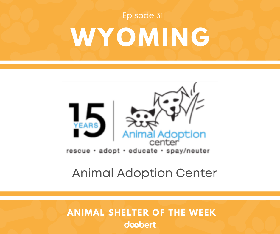 FB 31. Animal Adoption Center_Animal Shelter of the Week