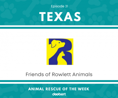 FB 31. Friends of Rowlett Animals_Animal Rescue of the Week