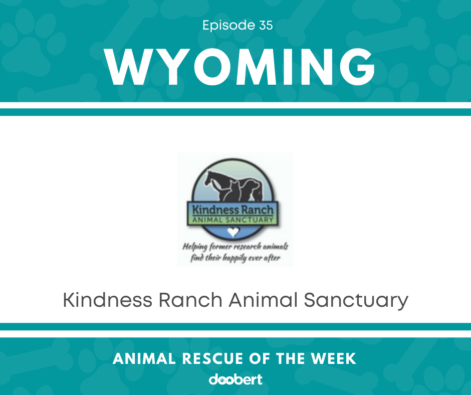 FB 35. Kindness Ranch Animal Sanctuary_Animal Rescue of the Week