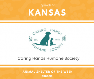 FB 36. Caring Hands Humane Society_Animal Shelter of the Week