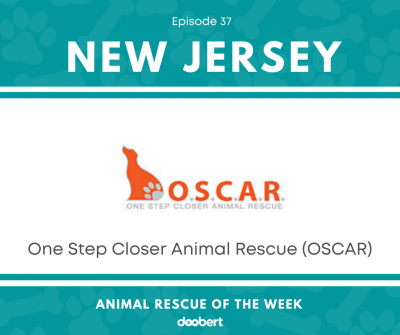 FB 37. One Step Closer Animal Rescue_Animal Rescue of the Week