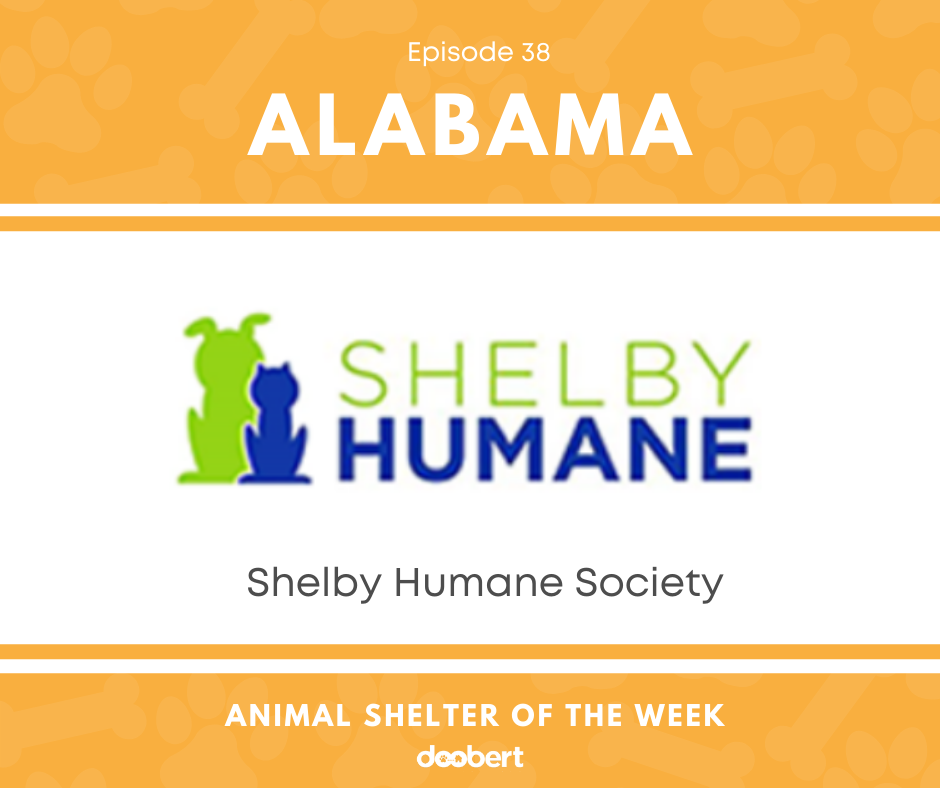 FB 38. Shelby Humane Society_Animal Shelter of the Week