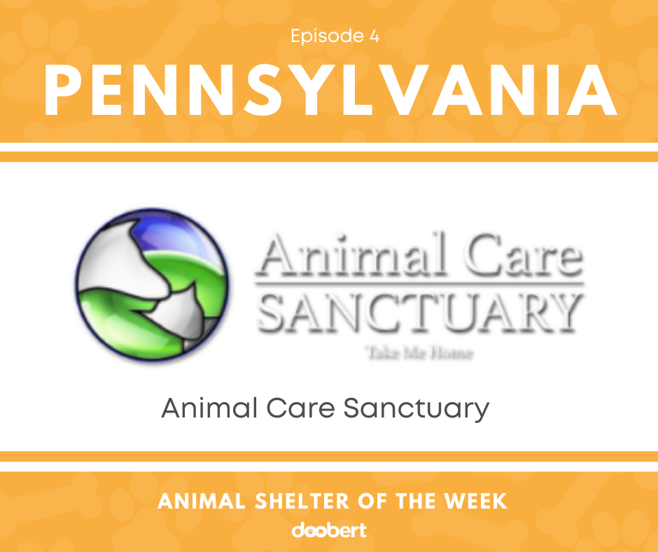 _FB 4. Animal Care Sanctuary_Shelter of the Week