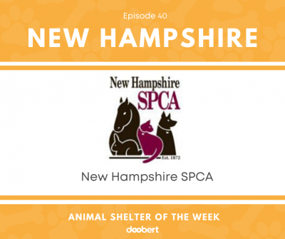 FB 40. New Hampshire SPCA_Animal Shelter of the Week