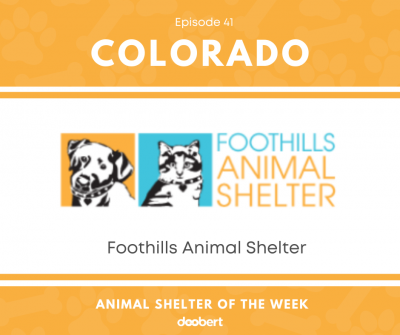 FB 41. Foothills Animal Shelter_Animal Shelter of the Week