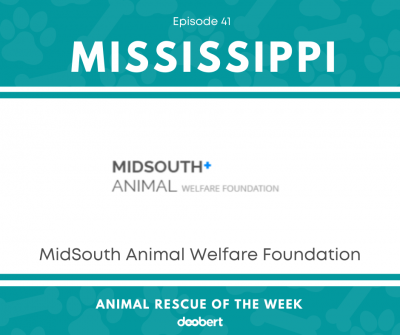 FB 41. MidSouth Animal Welfare Foundation_Animal Rescue of the Week