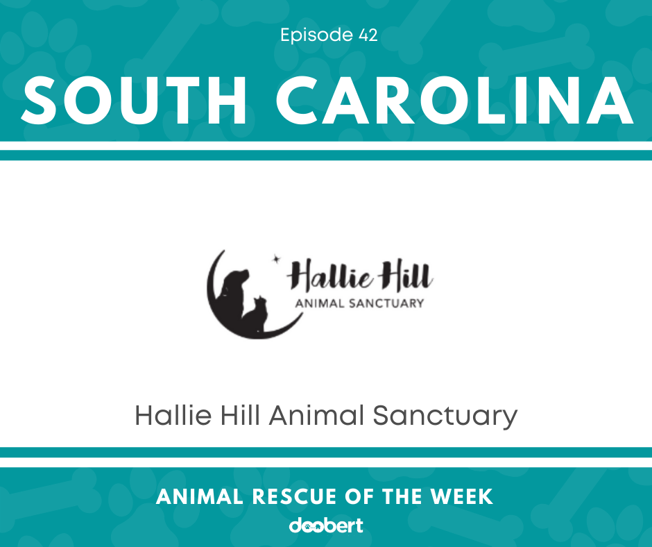 FB 42. Hallie Hill Animal Sanctuary_Animal Rescue of the Week