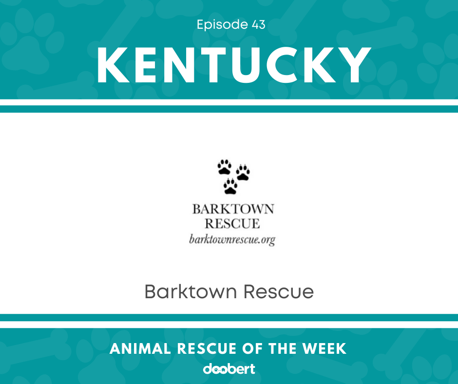 FB 43. Barktown Rescue_Animal Rescue of the Week