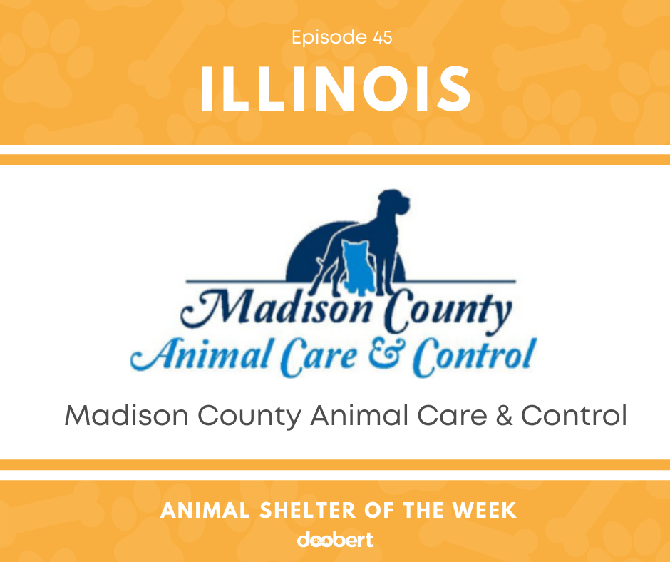 FB 45. Madison County Animal Care & Control_Animal Shelter of the Week