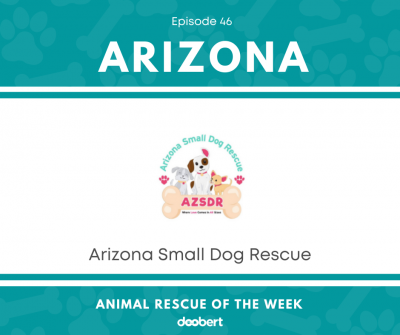 FB 46. Arizona Small Dog Rescue_Animal Rescue of the Week