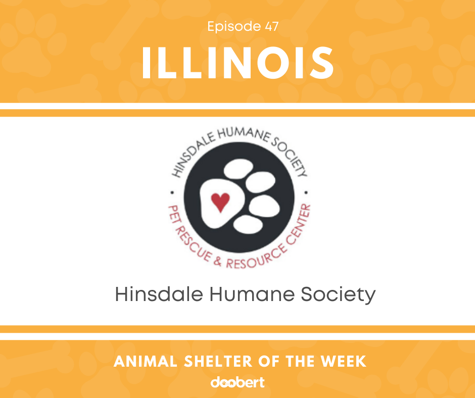 FB 47. Hinsdale Humane Society_Animal Shelter of the Week
