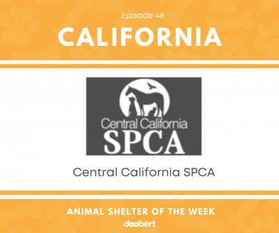 FB 48. Central California SPCA_Animal Shelter of the Week