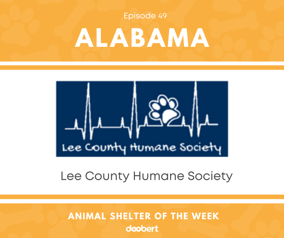 FB 49. Lee County Humane Society_Animal Shelter of the Week