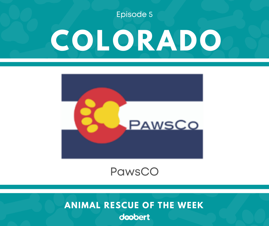 FB 5. PawsCO_Animal Rescue of the Week