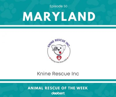 FB 50. Knine Rescue Inc_Animal Rescue of the Week