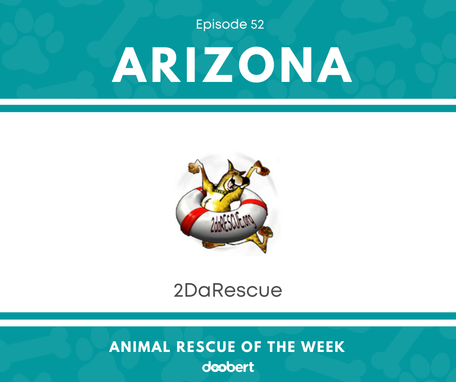 FB 52. 2DaRescue_Animal Rescue of the Week