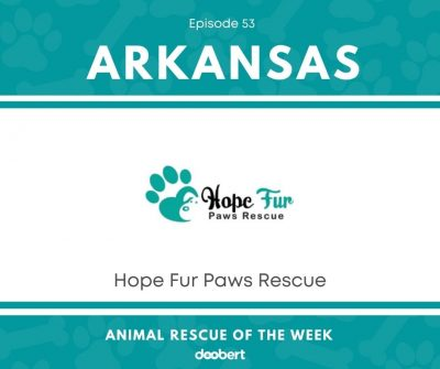 FB 53. Hope Fur Paws Rescue_Animal Rescue of the Week