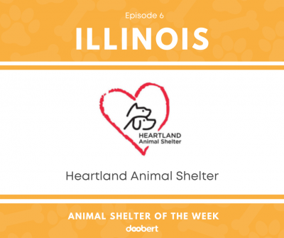 FB 6. Heartland Animal Shelter_Shelter of the Week