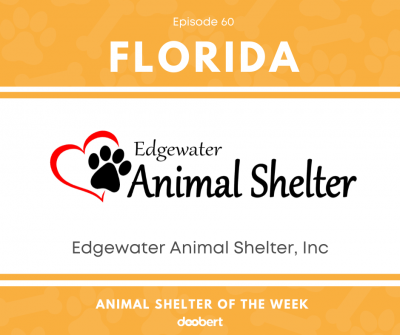 Edgewater Animal Shelter, Inc