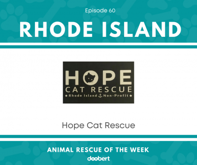 Hope Cat Rescue