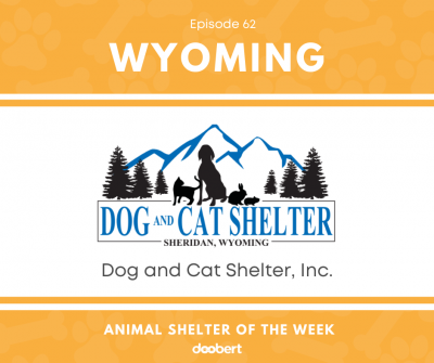 Dog and Cat Shelter, Inc.