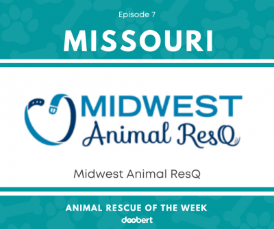FB 7. Midwest Animal ResQ_Animal Rescue of the Week