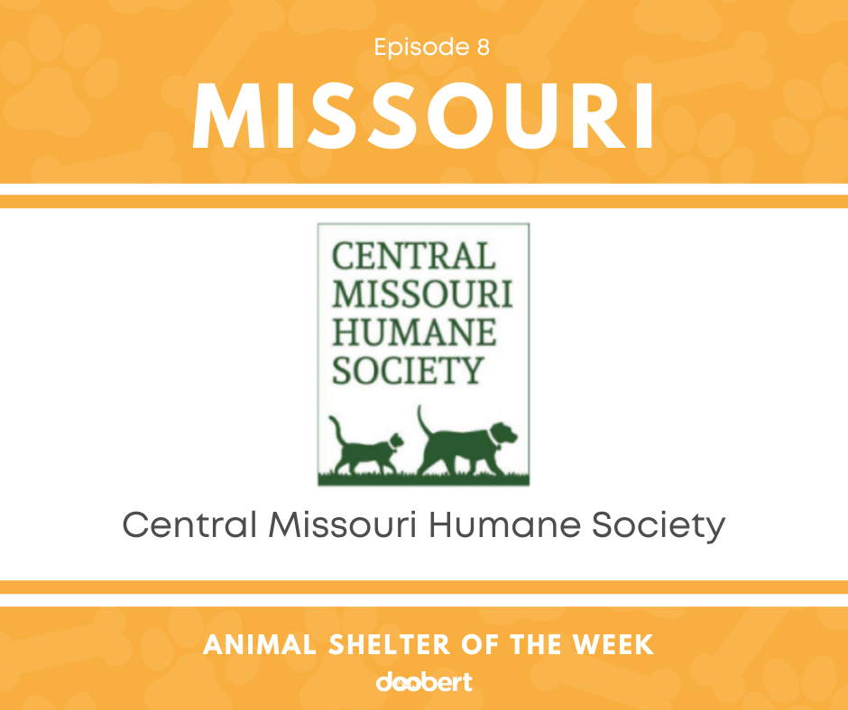 FB 8. Central Missouri Humane Society_Shelter of the Week
