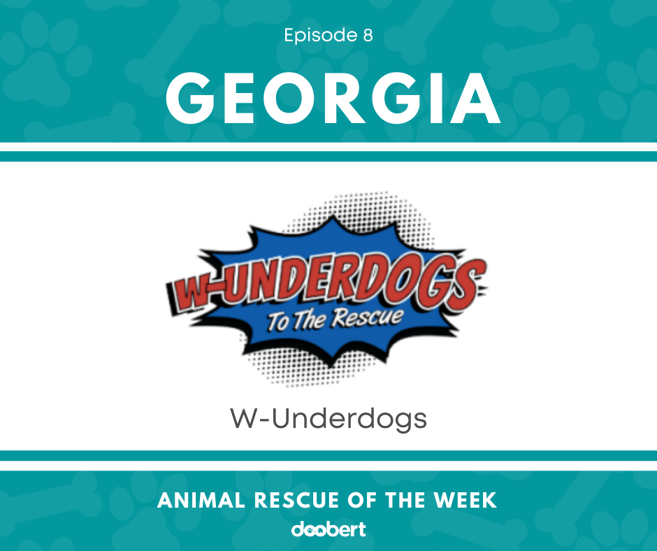 FB 8. W-Underdogs_Animal Rescue of the Week