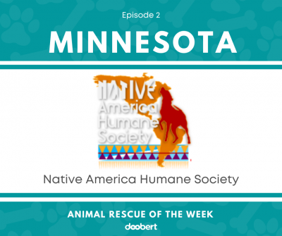 FB2. Native America Humane Society_Animal Rescue of the Week
