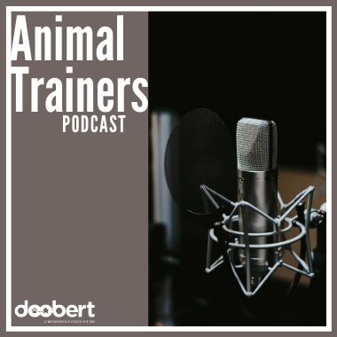 Trainer Podcast Cover