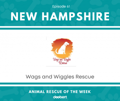 Wags and Wiggles Rescue