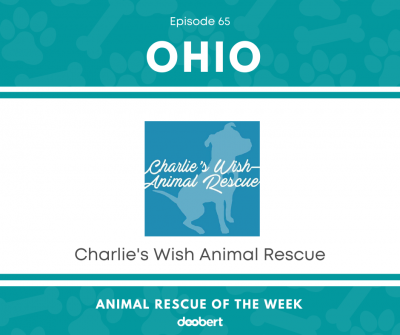 Charlie's Wish Animal Rescue