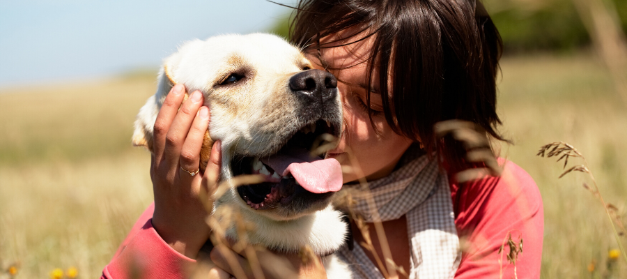 National Best Friends Day: 5 Reasons Why Dogs Are Called Man's Best Friend