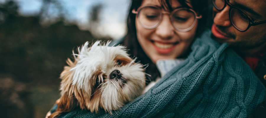 Considering Fostering? Here Are 5 Things to Keep in Mind