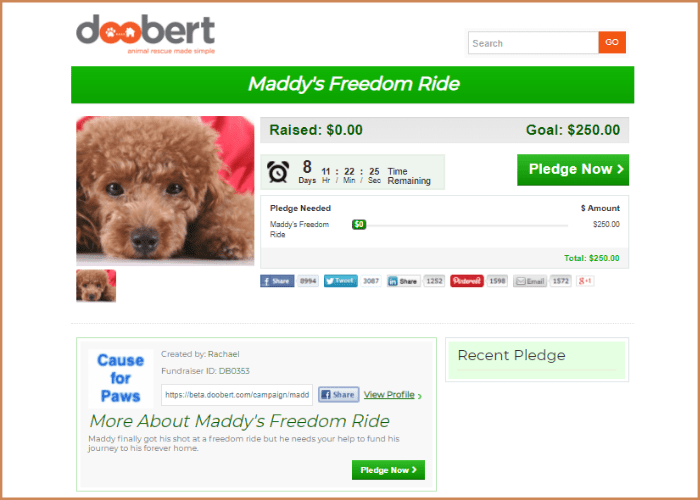 Maddy's Freedom Ride-min