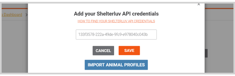 How to import animal profiles from shelterluv to doobert