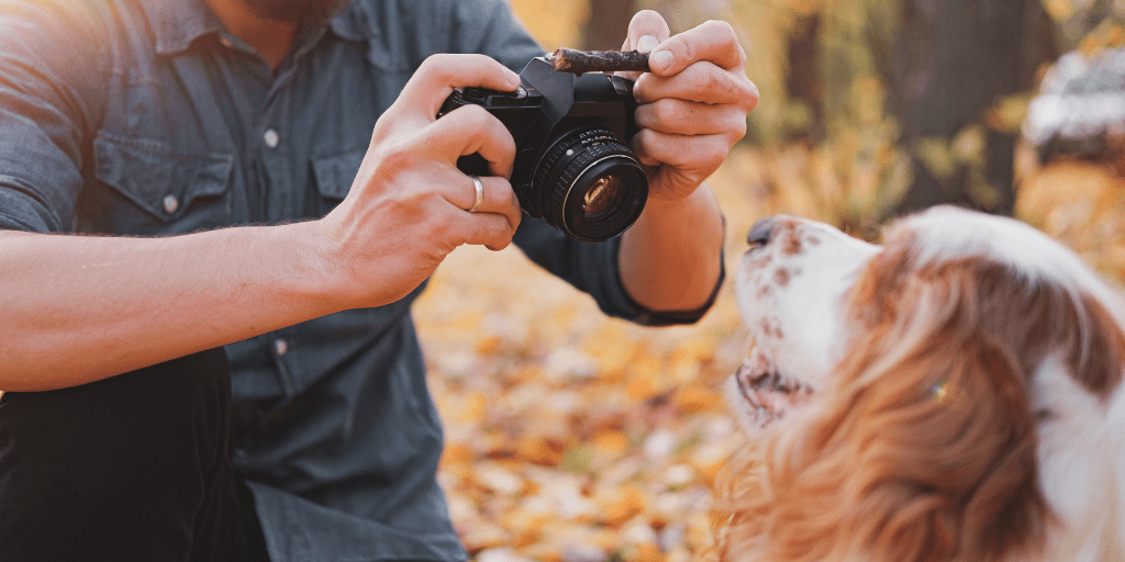 Boston Photographer Aspires to Tell Every Dog's Tale through Photography