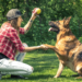 Research-based Solutions to Behavior Problems in Dogs | Center for Canine Behavior Studies