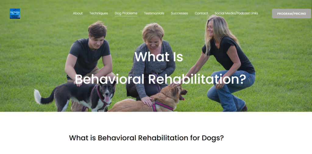 Change Your Dog's Perspective to Change Their Behavior | UPWARD Dogology