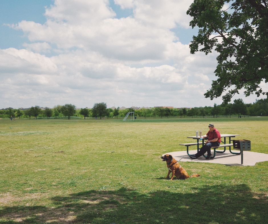 Say Goodbye to Awkward Interactions at the Dog Park | PawConX