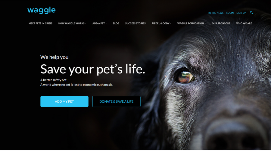 Only Pet Crowdfunding Platform in Partnership with Vets to Help Pet Owners with Vet Care | Waggle