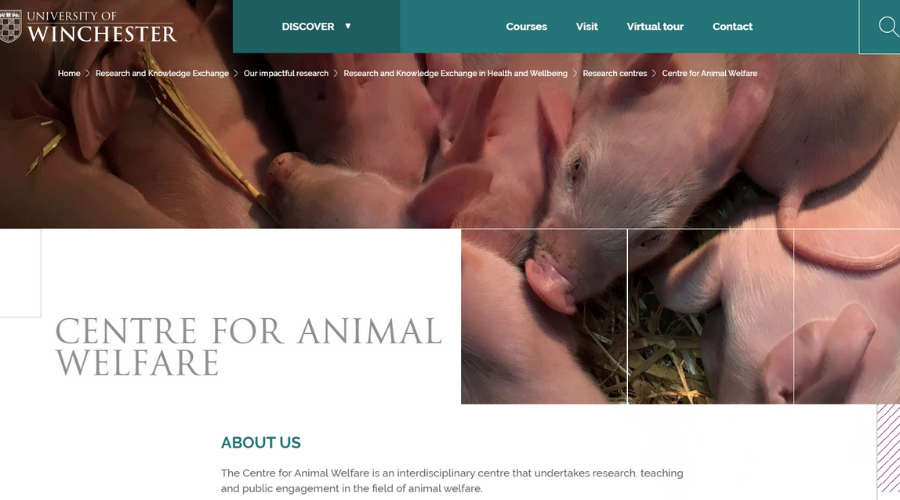Professor Aims to Educate People on Animal Welfare   Andrew Knight   Centre for Animal Welfare