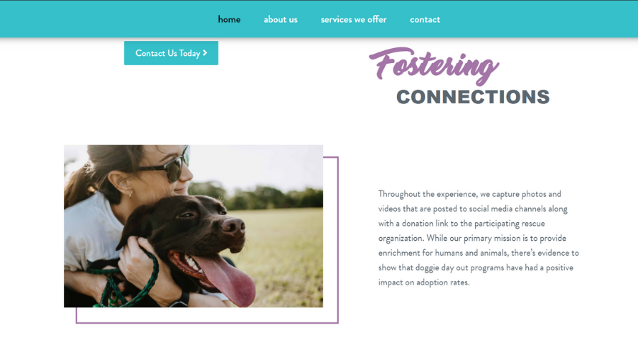 Helping Homeless Dogs Find Homes By Connecting Them with People   Stella's Ride