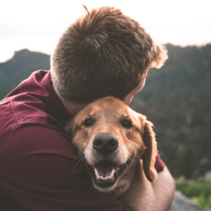 Creating Partnerships That Strengthen Human-Animal Connections   Animals Connect Everyone